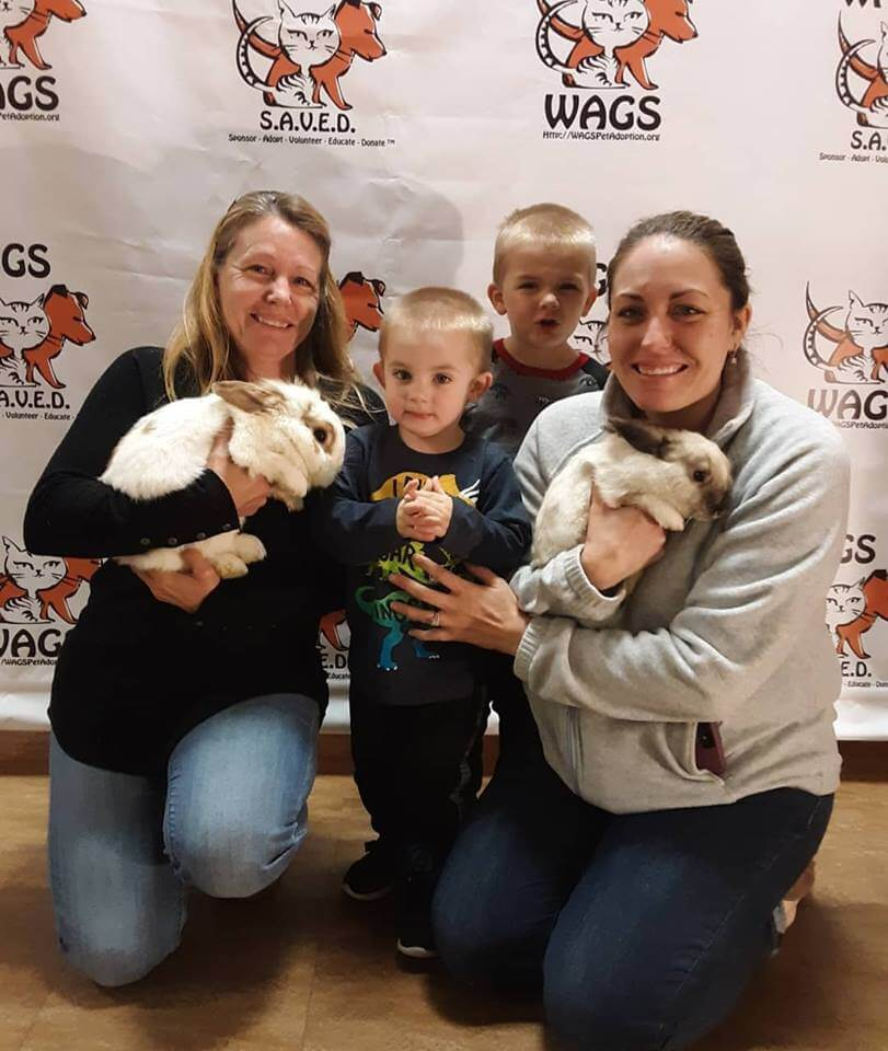2 bunnies were adopted WAGS