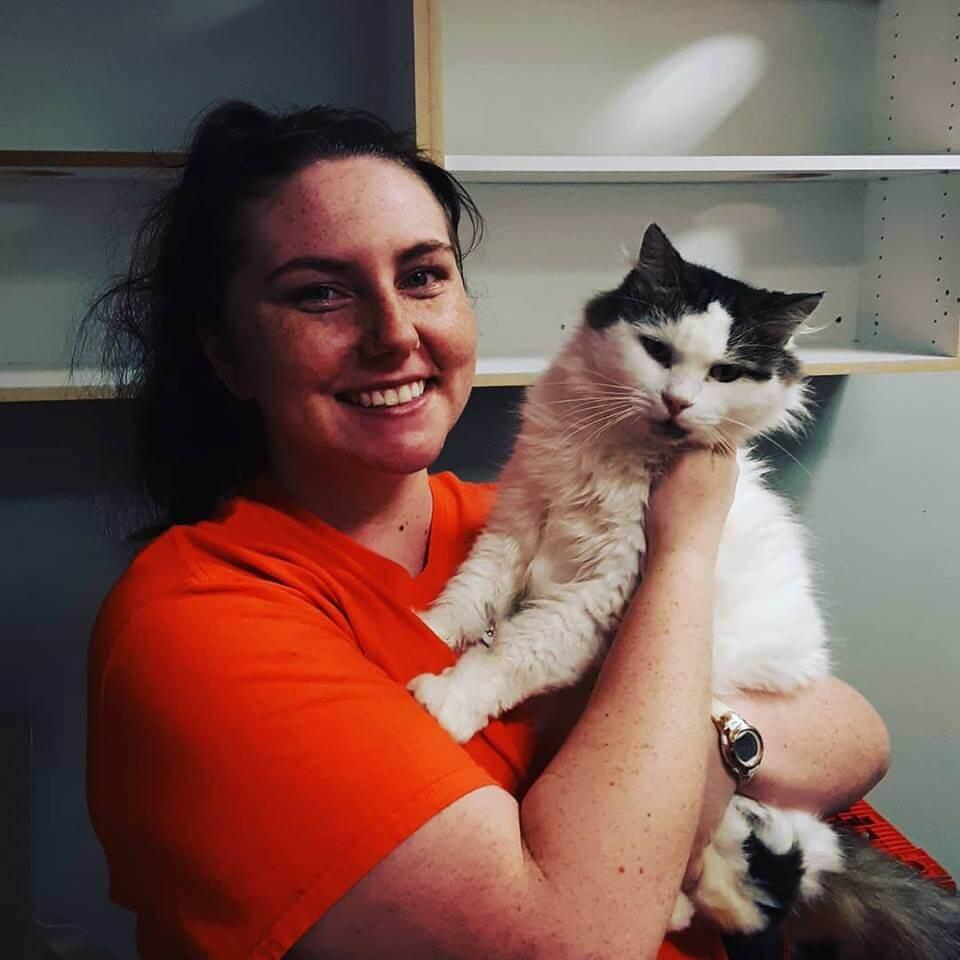 WAGS adoption cat