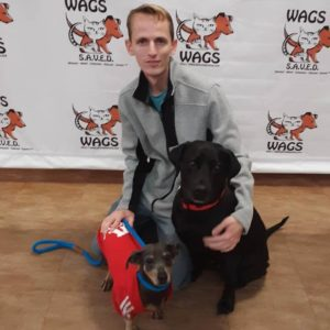 lovely dogs were adopted at WAGS