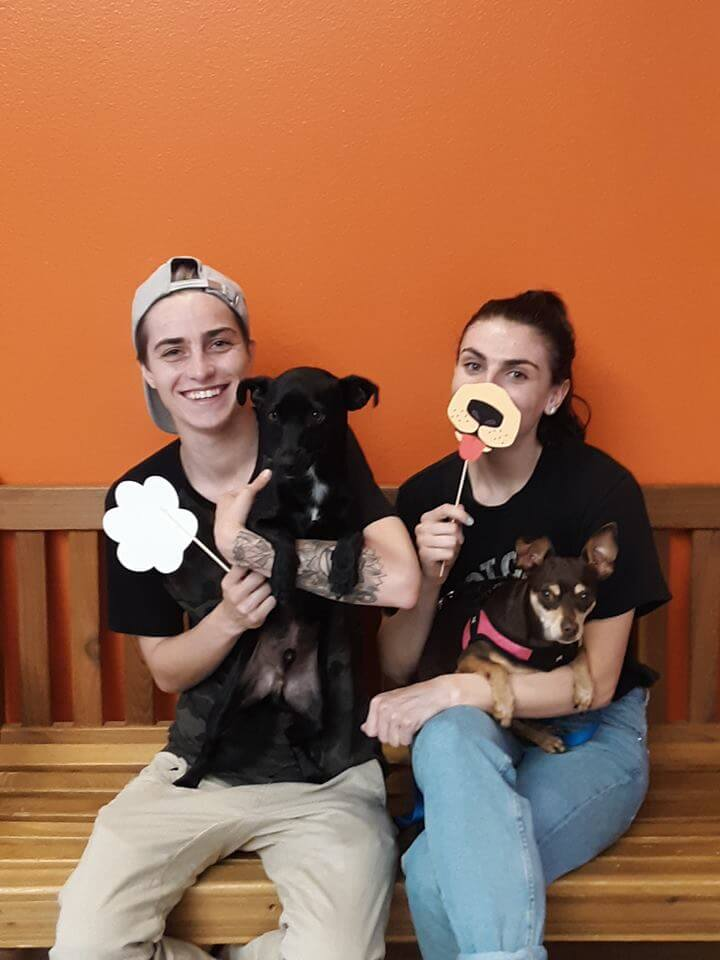2 dogs were adopted at WAGS