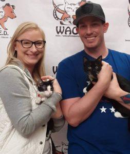 2 little cute kitten were adopted WAGS