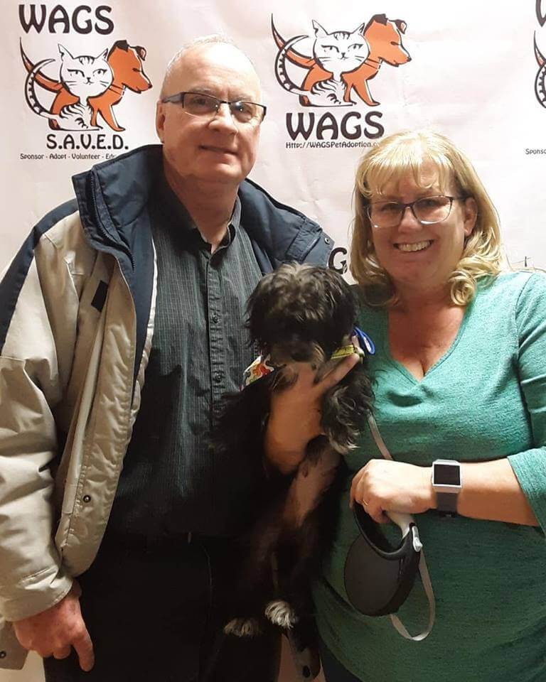 WAGS dog found new owner