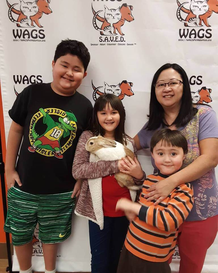 great family adopt a rabbit WAGS