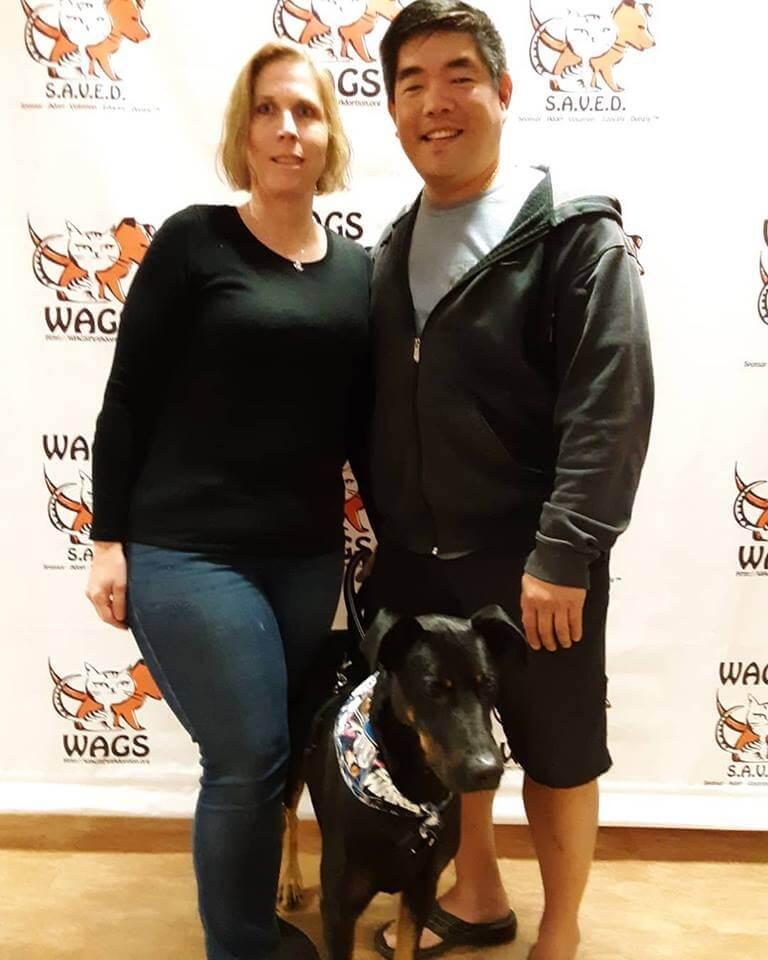 adorable dog adotpted at WAGS
