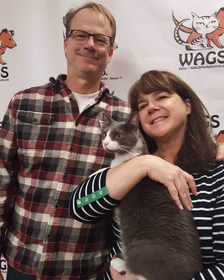 lucky cat got adopted WAGS