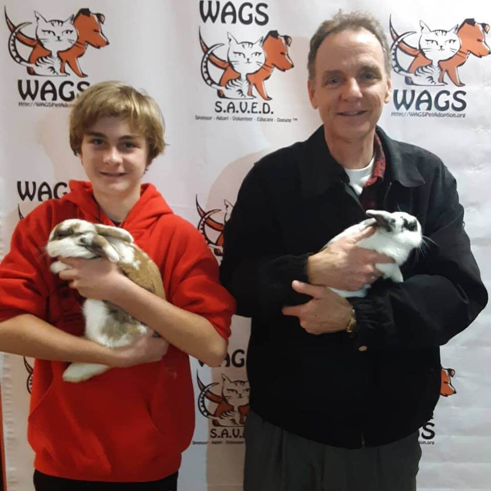 2 rabbits adopted WAGS