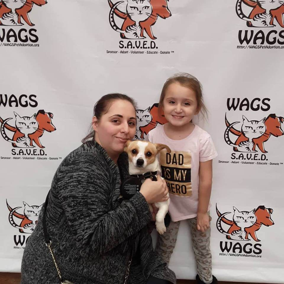 little girl adopt a dog at WAGS