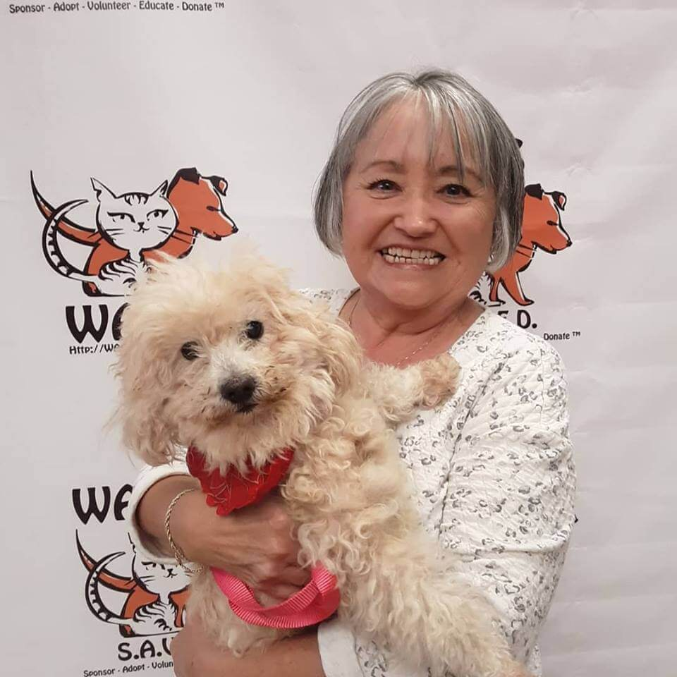 lucky dog adopt by an old lady WAGS