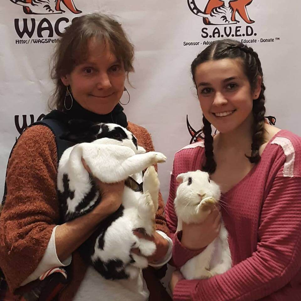 2 rabbits were adopted WAGS