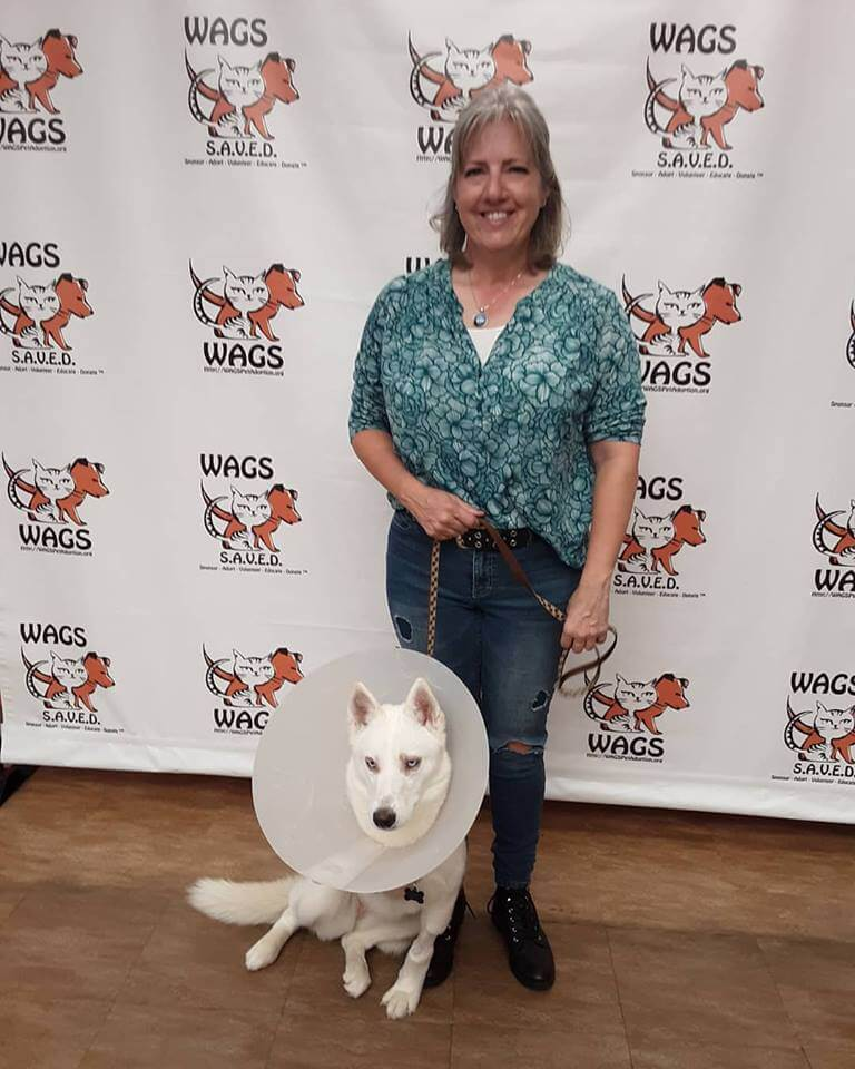 WAGS hiccup dog is now adopted