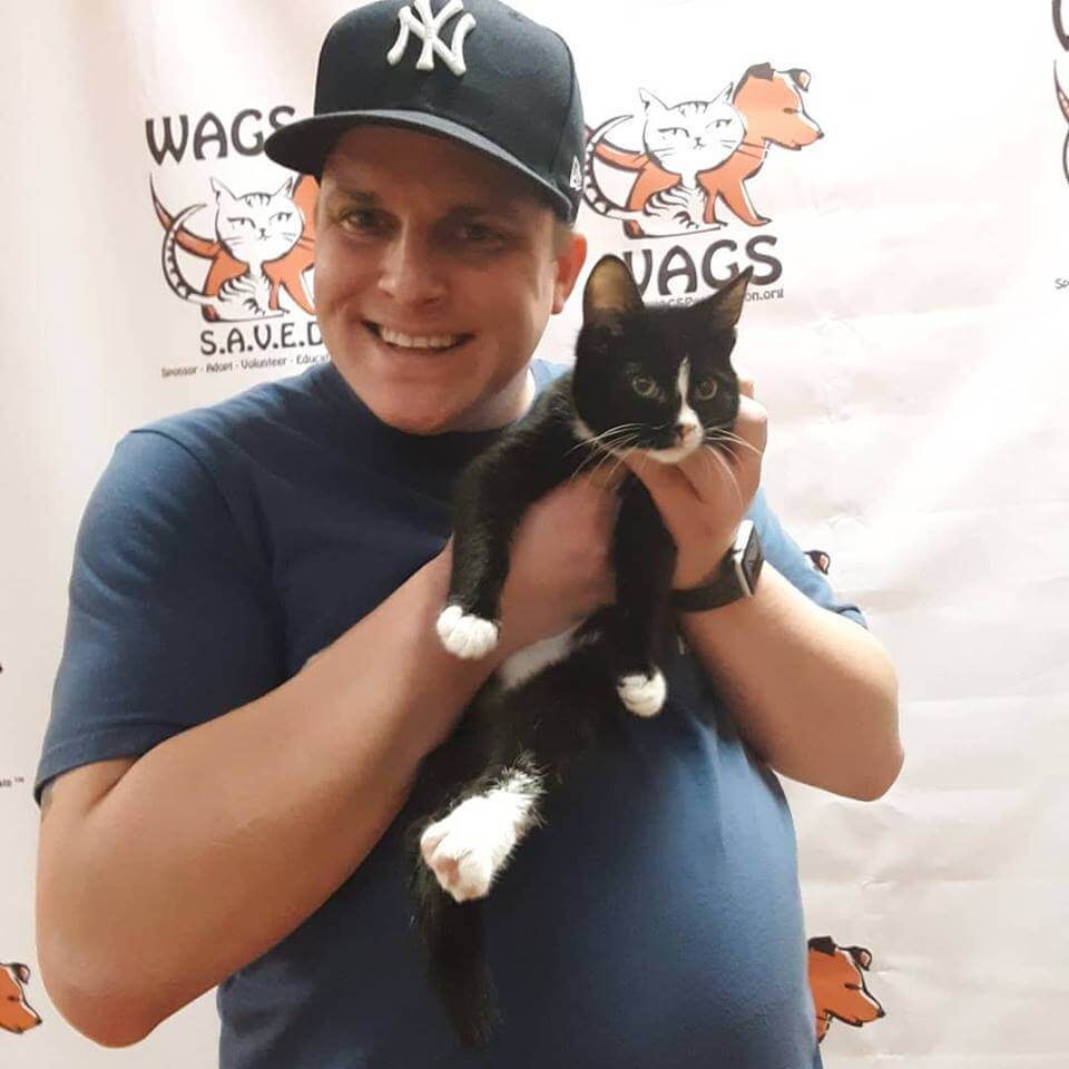 little balck kitten adopted by young man WAGS
