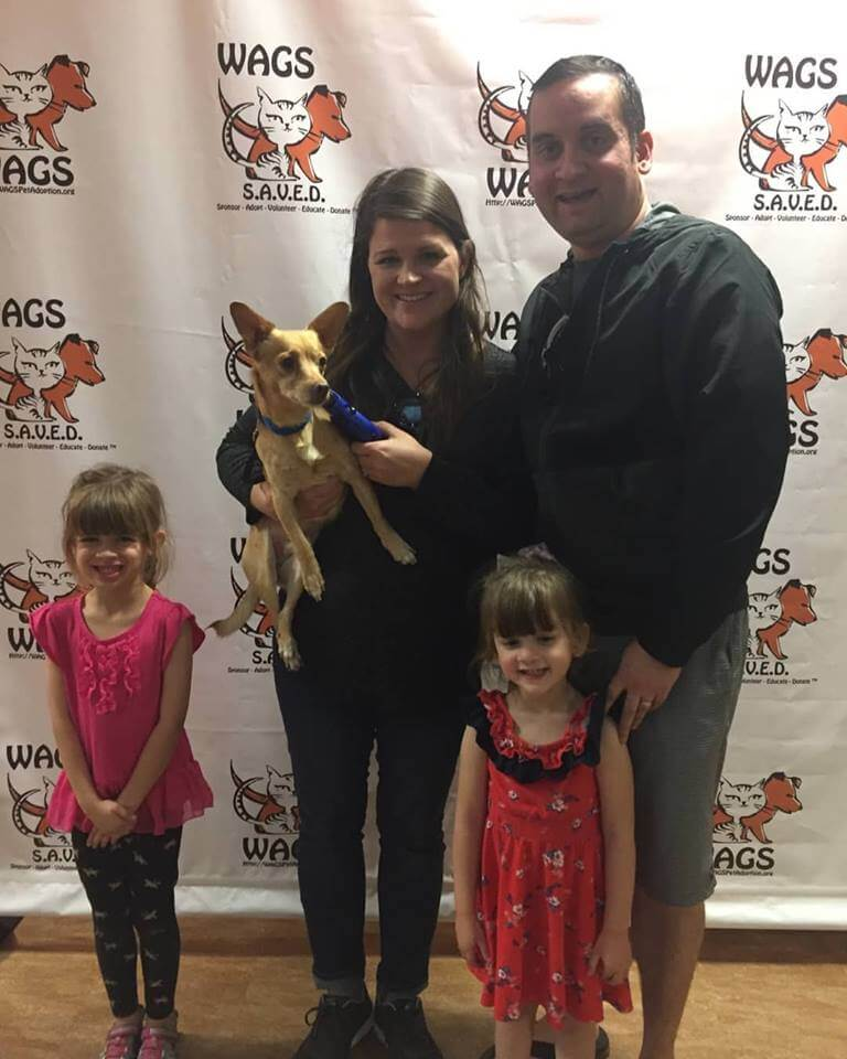 great family adopted a small dog WAGS