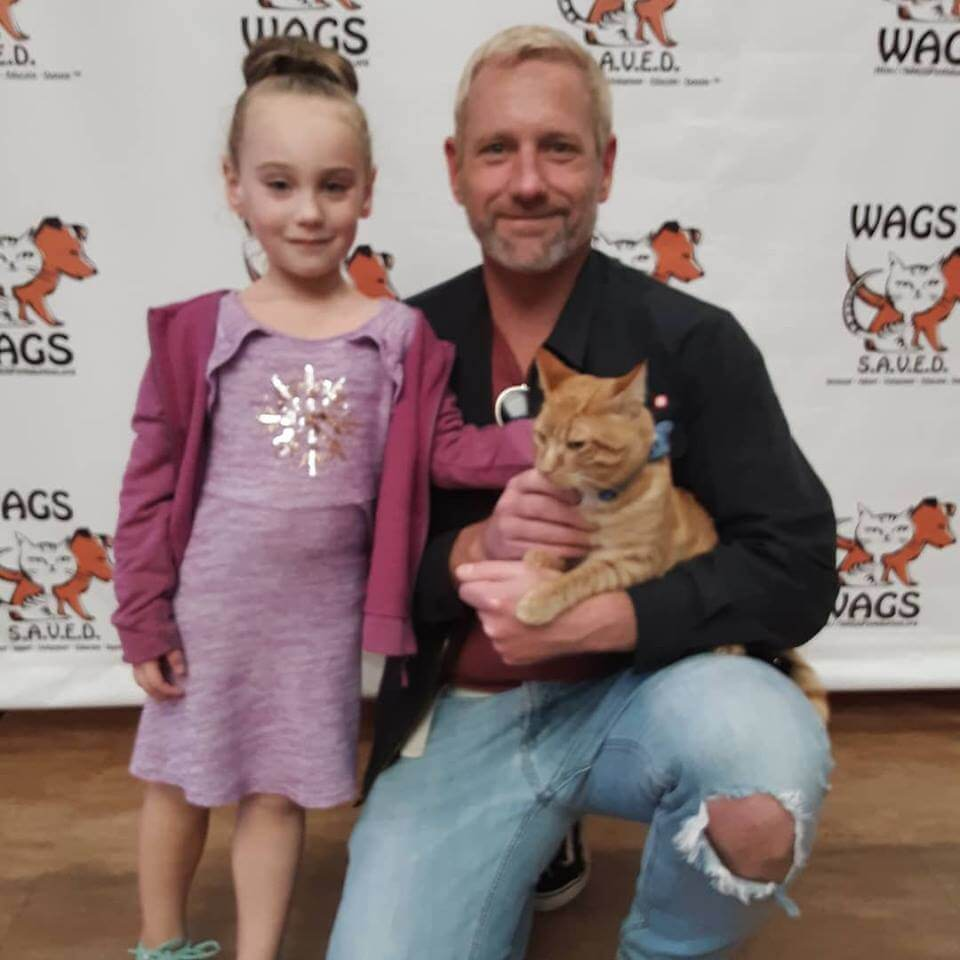 little kid and her dad adopt a cat WAGS