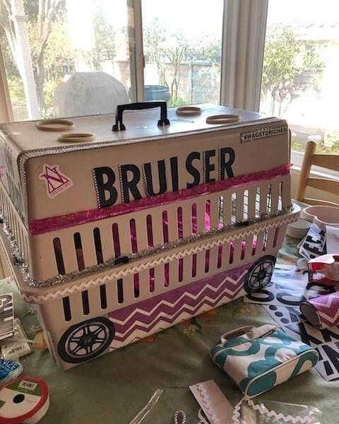 bruiser dog cage