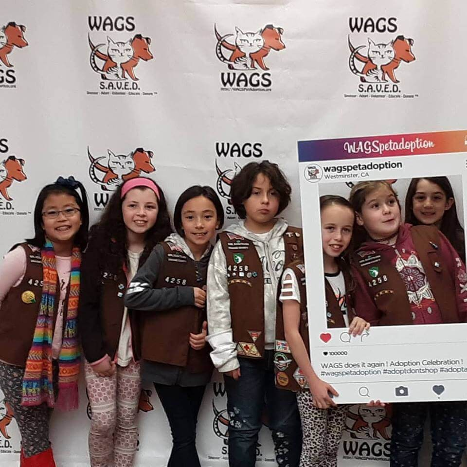 girl scout troops visited WAGS