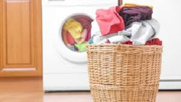 wags need volunteer for laundry