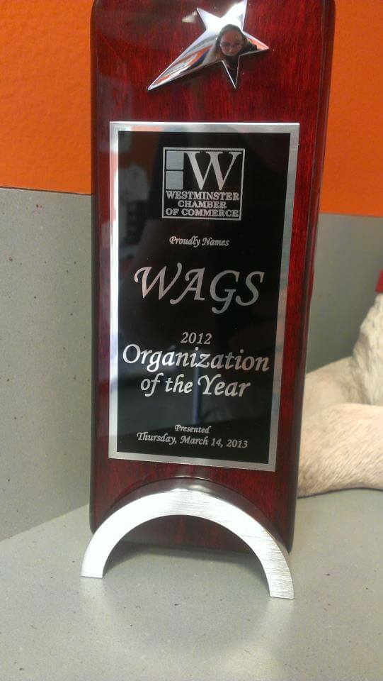 WAGS award Westminster