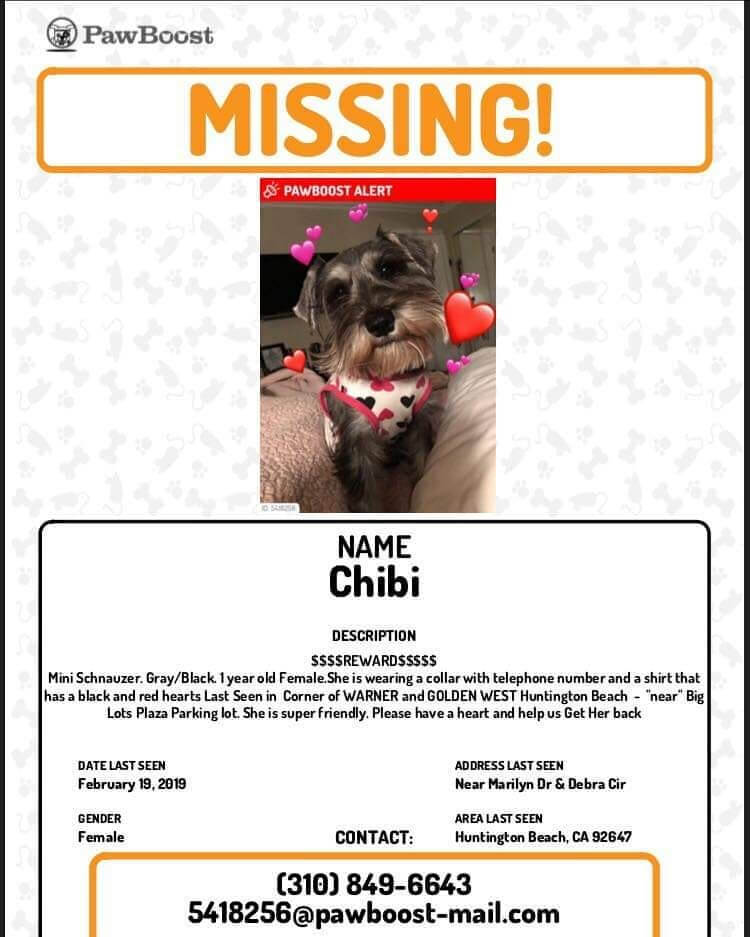 missing dog chibi WAGS