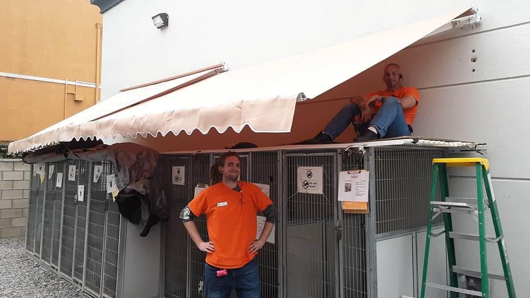 WAGS staff josh and max