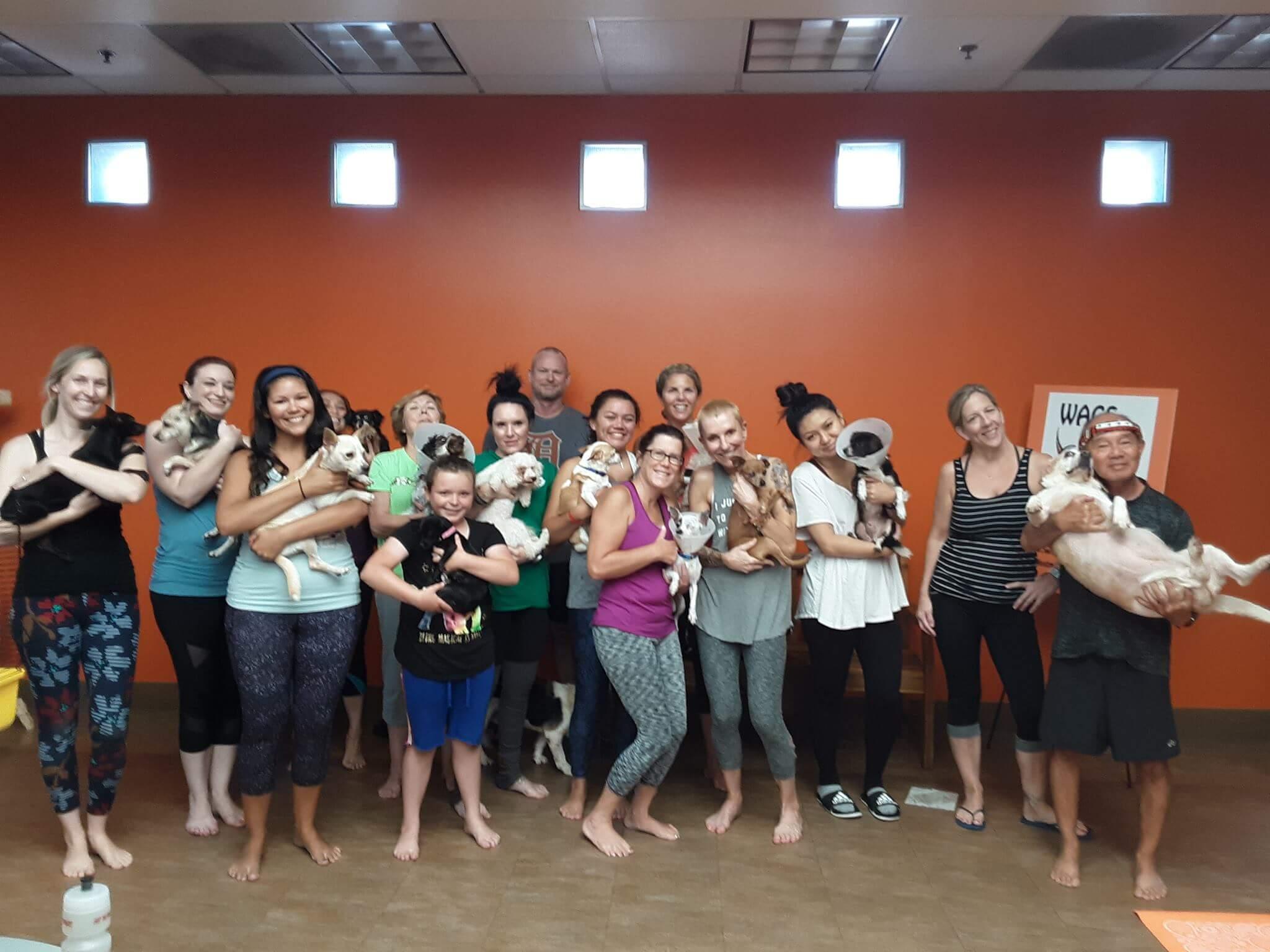 WAGS new dog yoga class