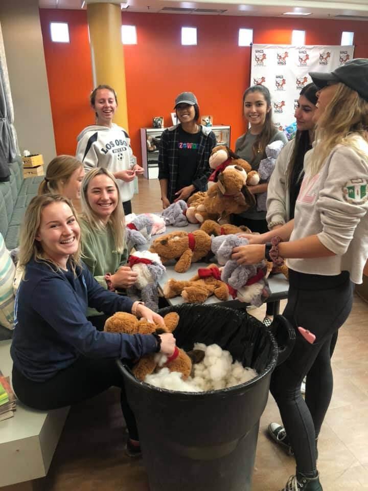 delta zeta girls volunteer at WAGS