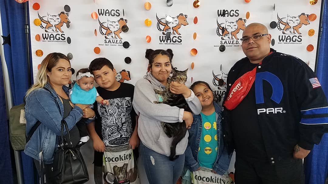 Arapaho has been adopted after 640 days WAGS