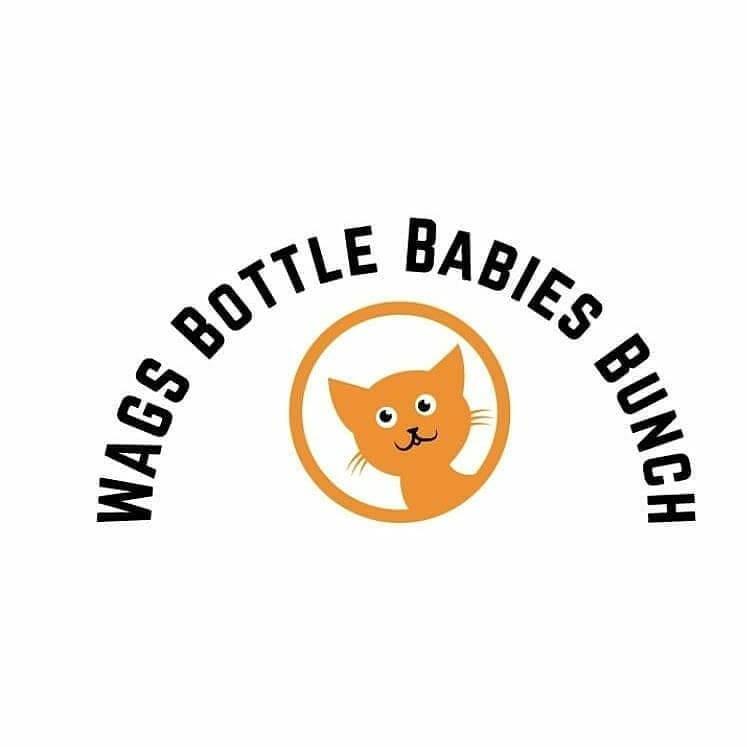 WAGS bottle babies bunch