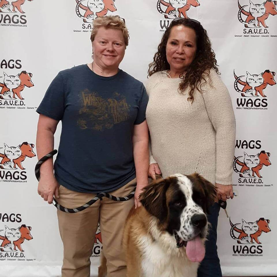 Our VERY handsome Mozart was adopted today WAGS