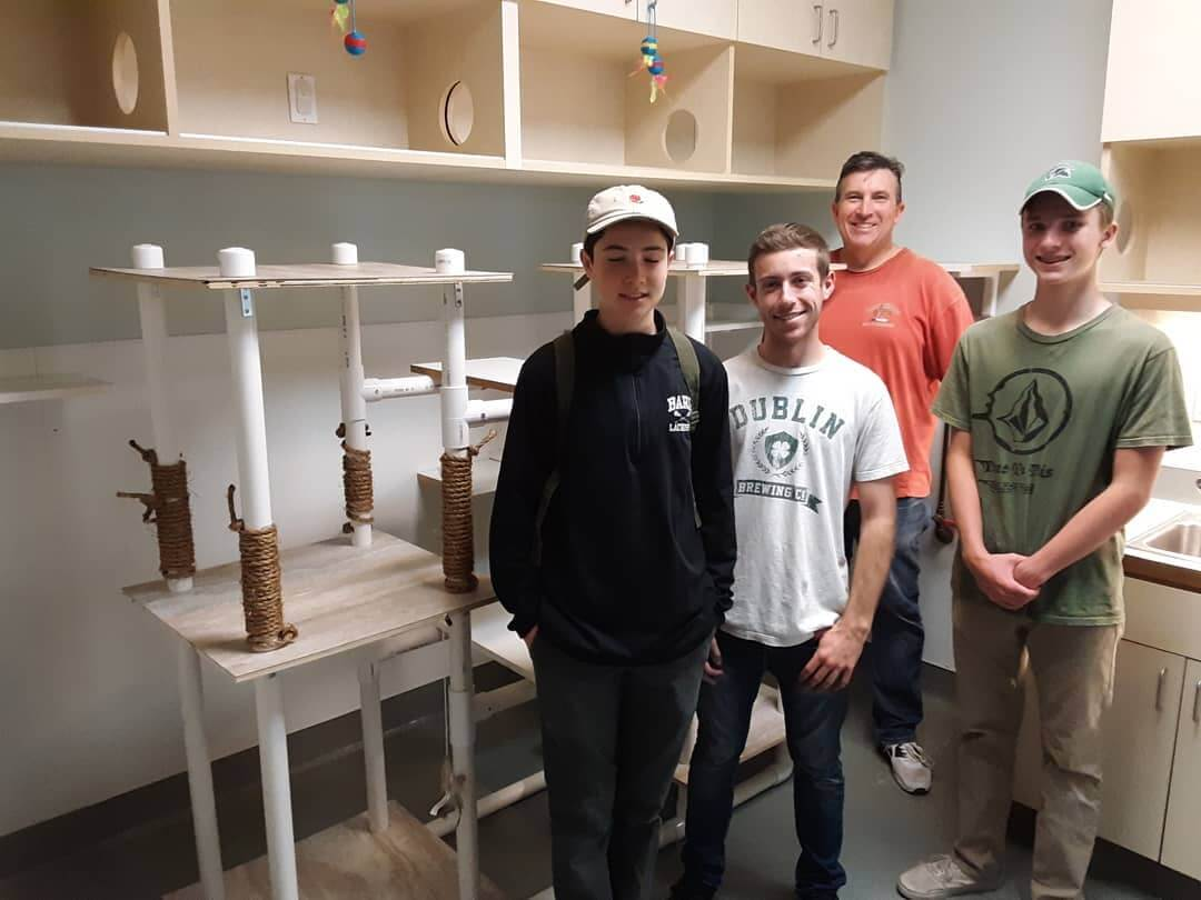 Nico and his construction crew today for giving our Cat Castle an upgrade WAGS