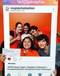 WAGS reach their goal donation