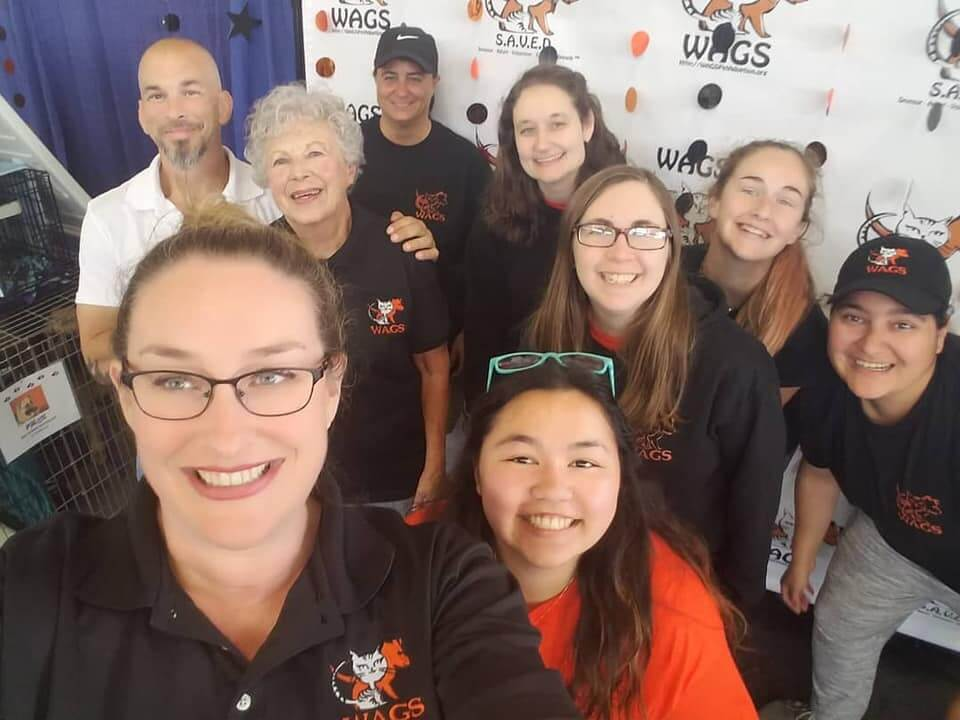 wags staff ready at pet expo