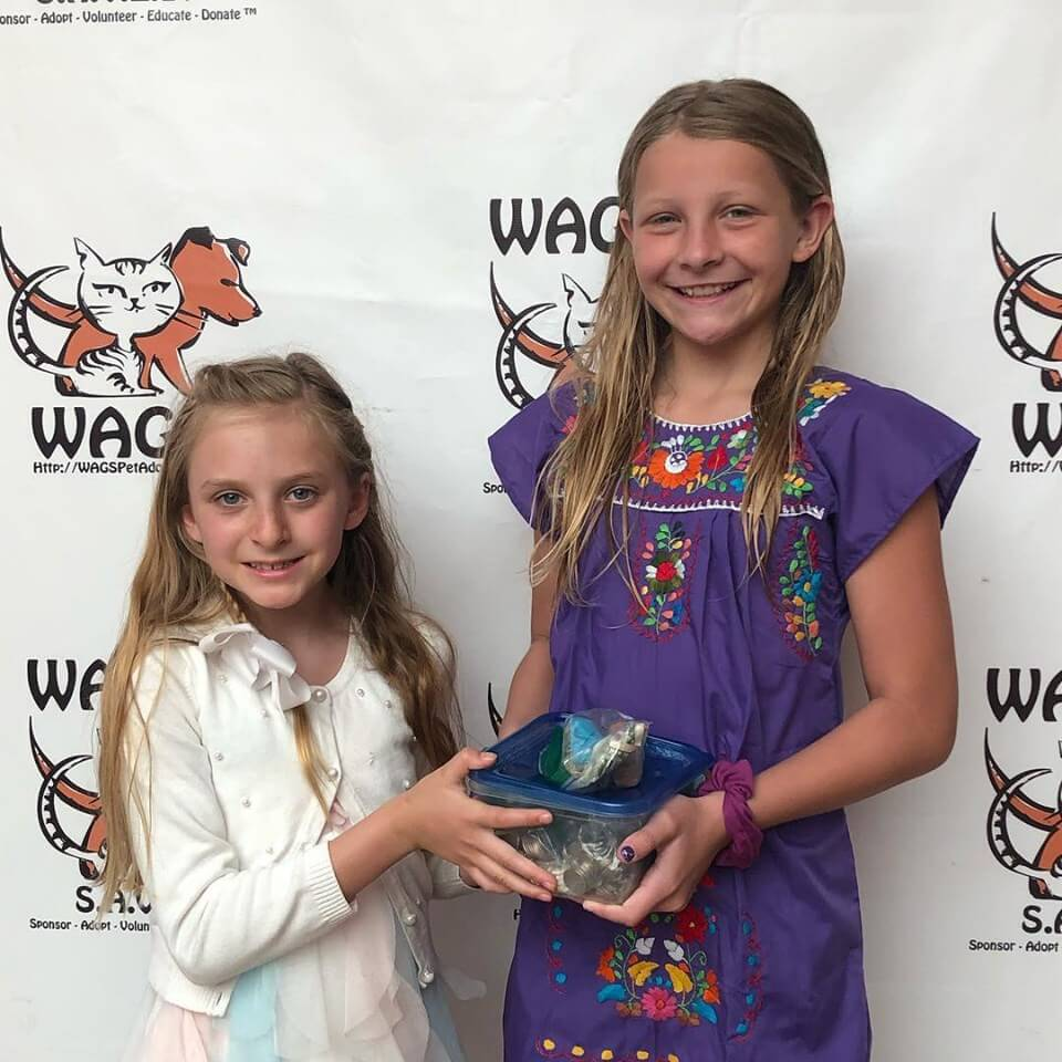 Thank you for donations! sisters WAGS