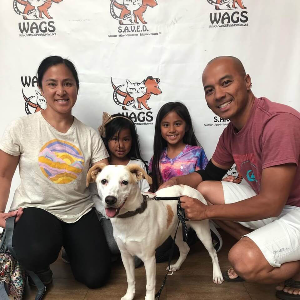Tater was adopted! WAGS