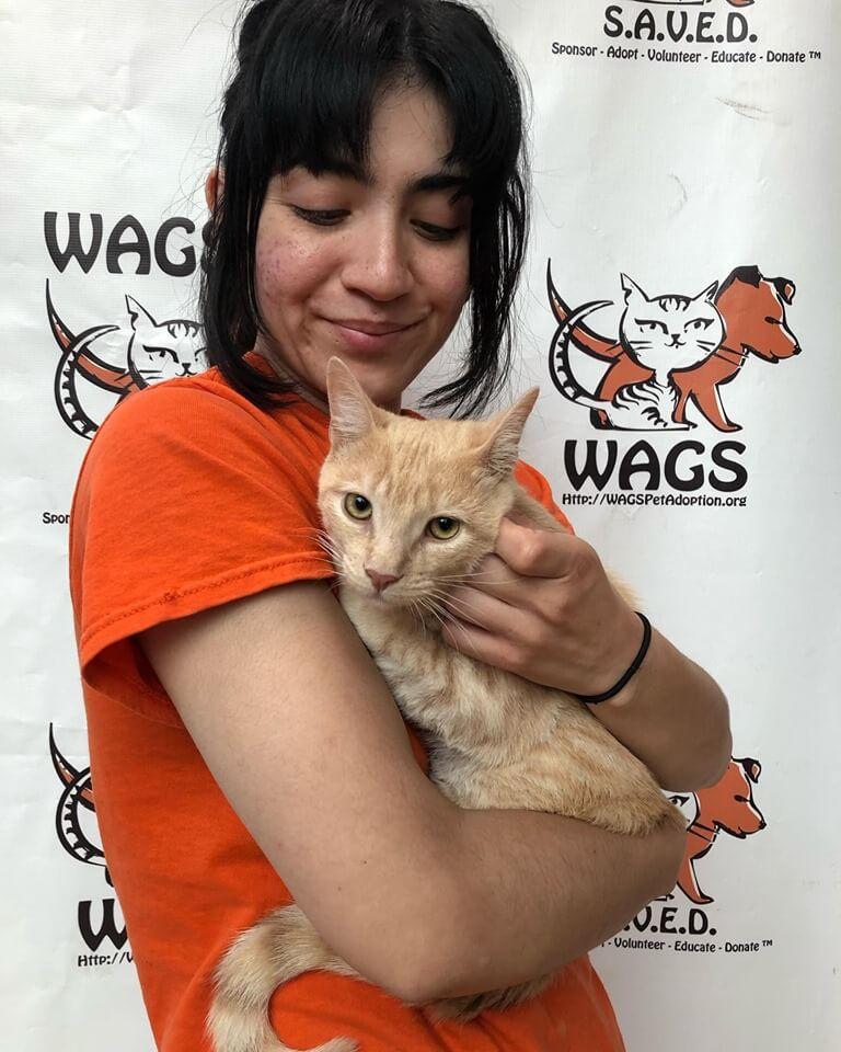 Selena's Cat WAGS