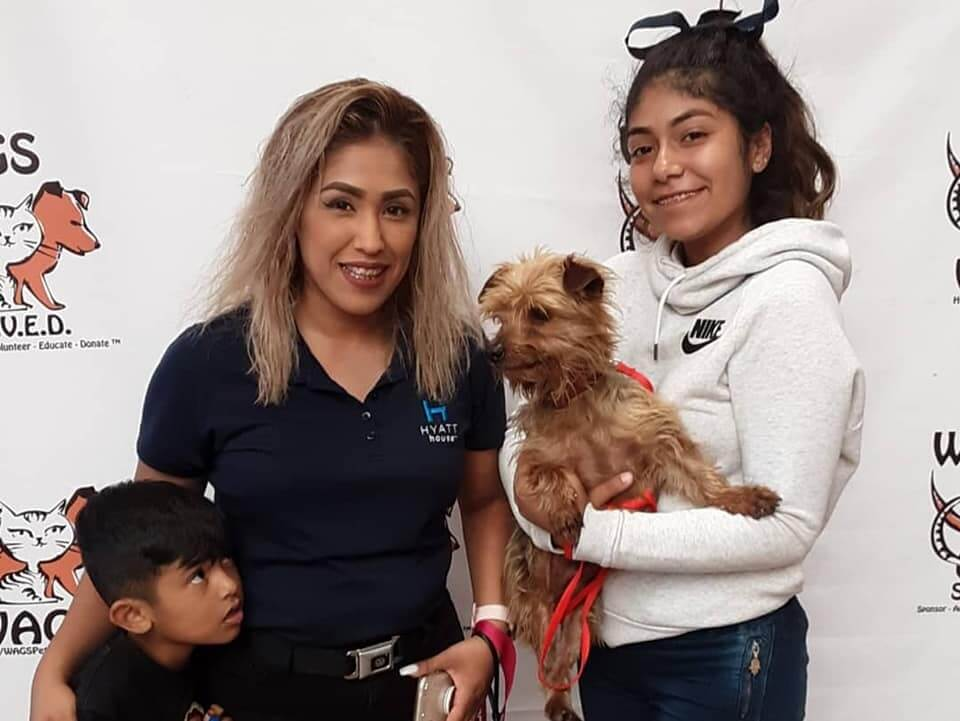 another adoptions 13 pets WAGS