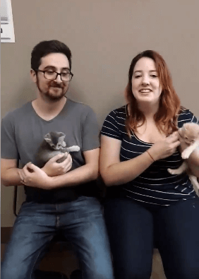 Foster Parents WAGS