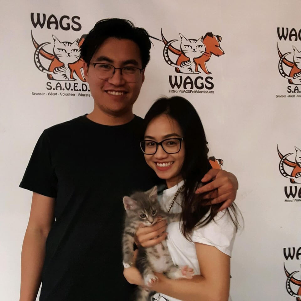 17 adoptions today!! WAGS