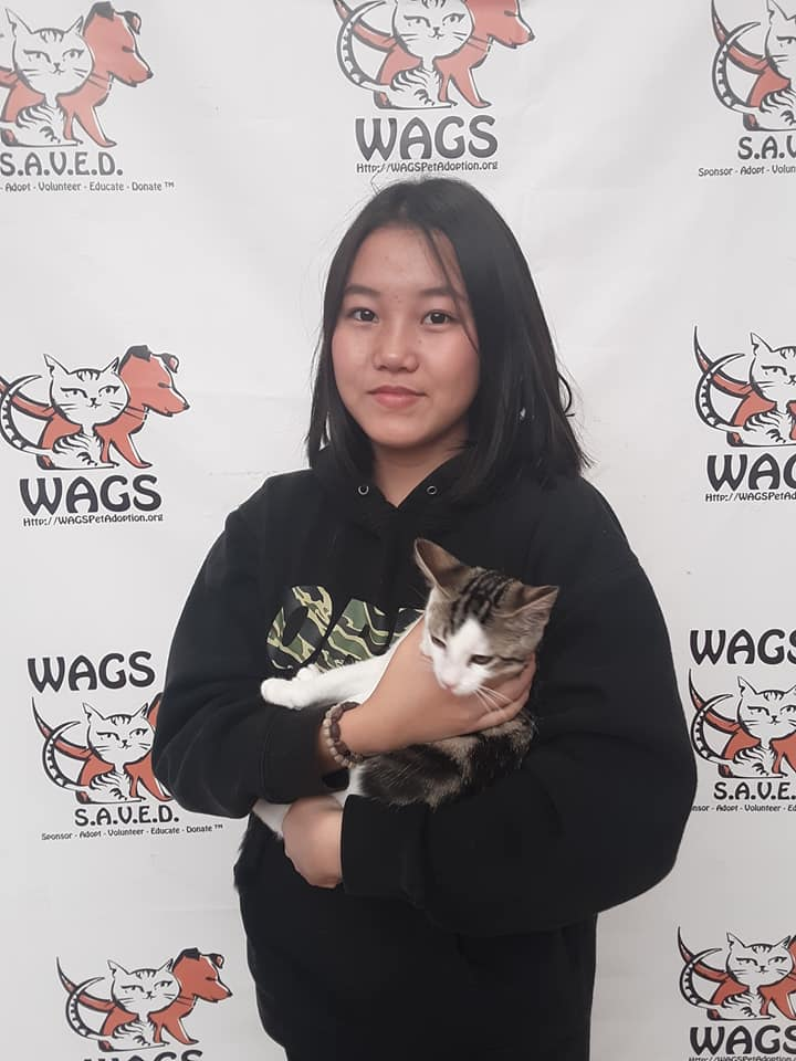 11 adoptions today! Whoo hoo! WAGS
