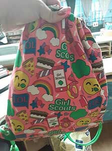 lost and found girl scout bag WAGS