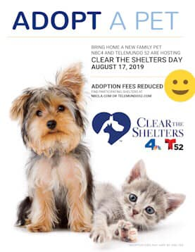 #ClearTheShelters19 !!!! Starting today august 17 2019 WAGS