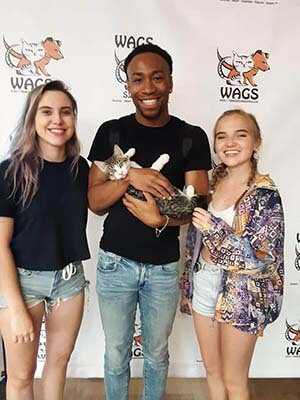 8 pets were adopted today 08092019 WAGS