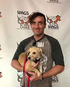 Dog Pygmy was adopted! WAGS