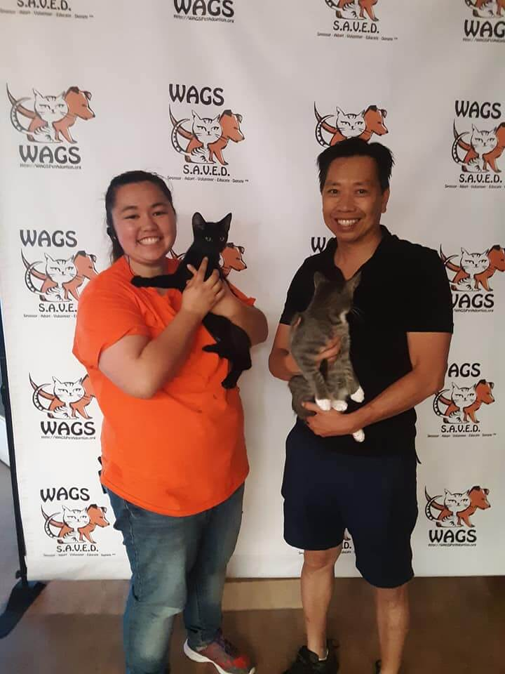 13 pets adopted today 08102019 WAGS