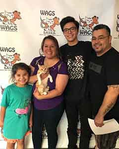 Maui found his new family! WAGS