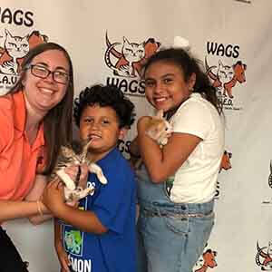 Tick Tick & Coral were adopted together! WAGS