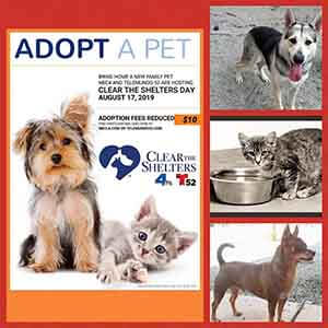 THIS SATURDAY from 10am-6pm is #cleartheshelters WAGS