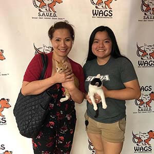 6 Pets were found new furever home WAGS