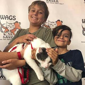 4 Pets were adopted today 09222019 WAGS