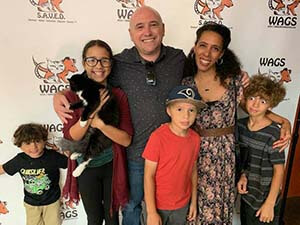 11 Kittens were adopted today 10/21/2019 WAGS