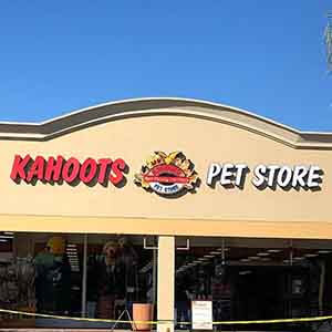 We're here @kahootsfeedandpet in @5_points_plaza! WAGS